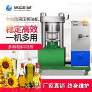 XZ-YZ150商用小型液压榨油机