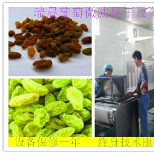 连续式葡萄干微波烘干机厂家
