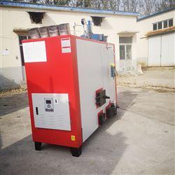 杀菌配套生物质蒸汽发生器