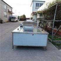 工业用专业大型蔬菜清洗机 加长双层可定做