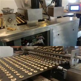 HQ-CK1000型全自动巧克力颗粒曲奇饼生产线 蛋黄饼设备