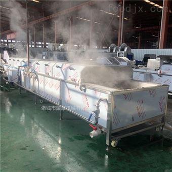 百香果蒸煮漂烫机