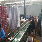6XY-2红灯预冷选果分级机 直径分选樱桃的好设备