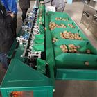 XGJ-Z多等级西红柿选果机 厂家直销