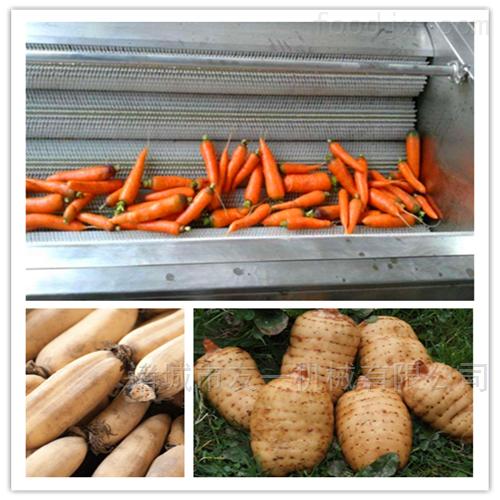 土豆清洗设备~全自动不锈钢萝卜去皮机