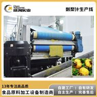 CXL-GZ定制 刺梨浓缩果汁生产线 刺梨原液加工设备