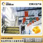 厂家定制 芒果加工生产线 浓缩汁加工设备