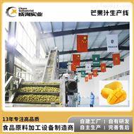 CXP-L-MG厂家定制 芒果加工生产线 浓缩汁加工设备