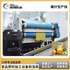 厂家定制 全自动桃汁生产线 鲜桃汁加工设备