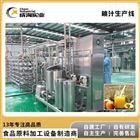 水果果汁桃子饮品 NFC纯果汁成套生产线