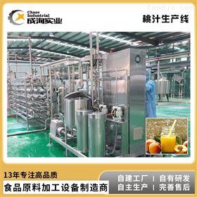 CX-L-GZ-204水果果汁桃子饮品 NFC纯果汁成套生产线