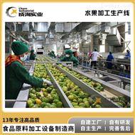 CXP-L定制 果汁果酱加工设备 果蔬深加工生产线