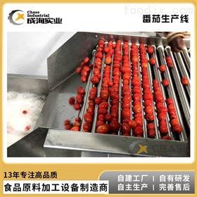 CXL-GZ厂家直销 全自动 成套番茄酱加工设备
