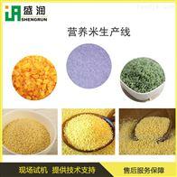 TSE70厂家直供 营养强化米生产线 米粉挤压机