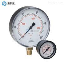 NOSHOK压力表25-510-6000-PSI/BAR-1/4-SSFF