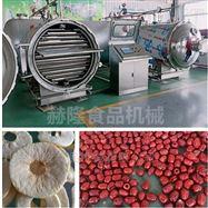 HL-1200脆枣真空压差干燥机