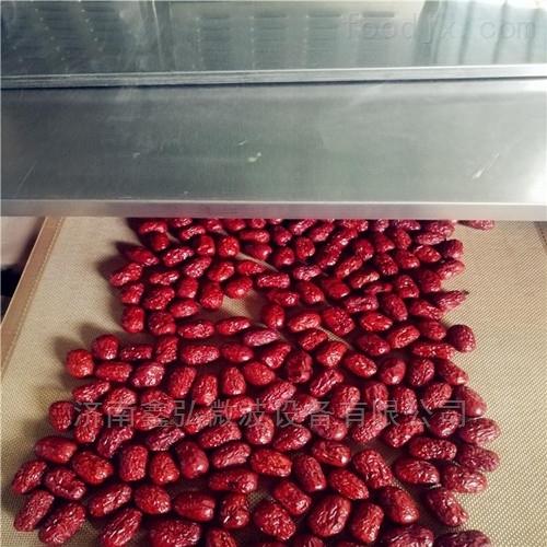 红枣微波干燥设备 微波杀虫卵