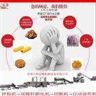 厂家定制膨化食品生产线  济南大彤志峰设备