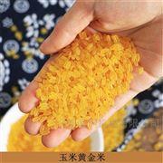 TSE70提供配方强化大米挤出机  营养米生产线