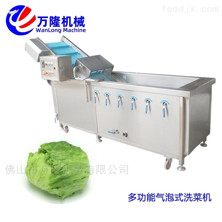 自动化苋菜洗菜机欢迎定制