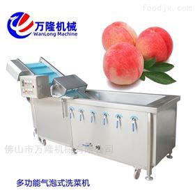 XC-2000商家推荐使用牛肉洗菜机