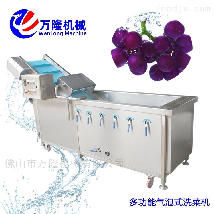 广东厂家自动金枪鱼洗菜机