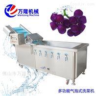 XC-2000专业供应提子洗菜机推荐使用