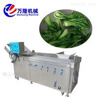 PT-22菠菜白菜现货定制豇豆连续式漂烫机