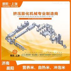 CY-75膨化机冲泡米设备  方便米食品机械