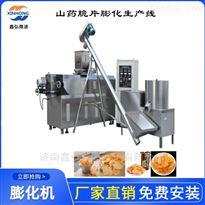 XH-85型山药脆片生产线 休闲小食品膨化设备