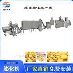 XH-85型休闲膨化零食生产线 麦香鸡味块设备