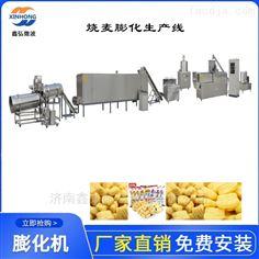 XH-70型休闲食品生产线 鸡味块小食品膨化机
