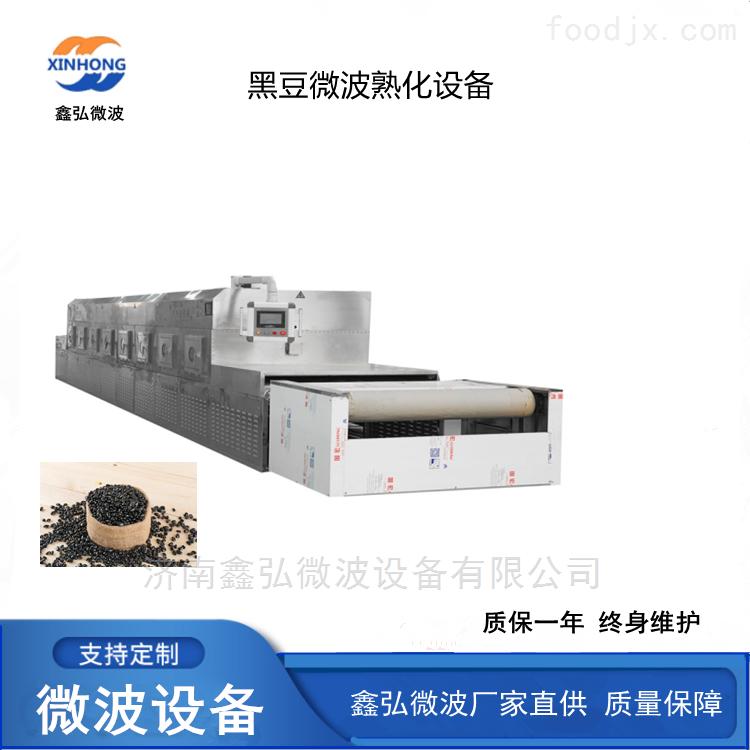 黑豆微波熟化杀菌设备 厂家直供
