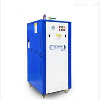 立浦96KW全自动蒸汽发生器节能低氮