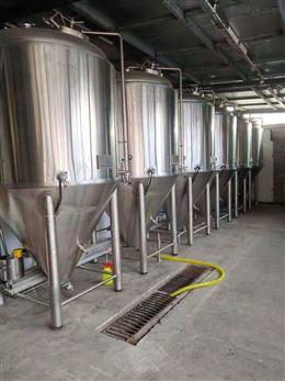 工厂型2吨精酿啤酒设备