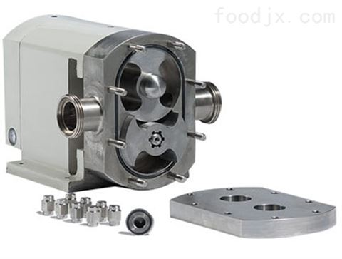 非摩擦式二翼四瓣式形轮转子泵