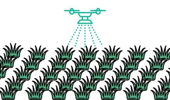 上海推動農業高質量發展:提升科技裝備、打造無人農場