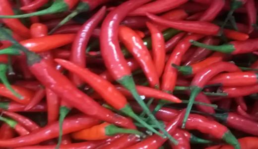 """農產品深加工成富農新路徑 """"德州味""""制成品飄香市場"""