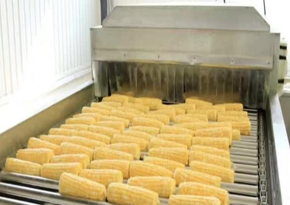 玉米加工流水线