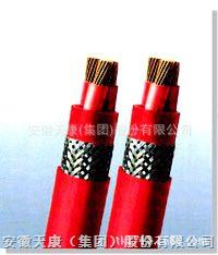 FGB铜芯氟聚合物绝缘硅橡胶护套扁型电力电缆