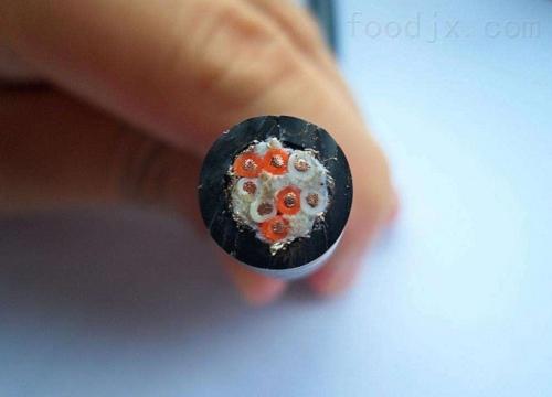 资阳区计算机控制电缆ZR-DJYP2VP2HD-12*2*1.5