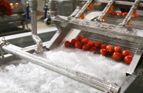 水果清洗线